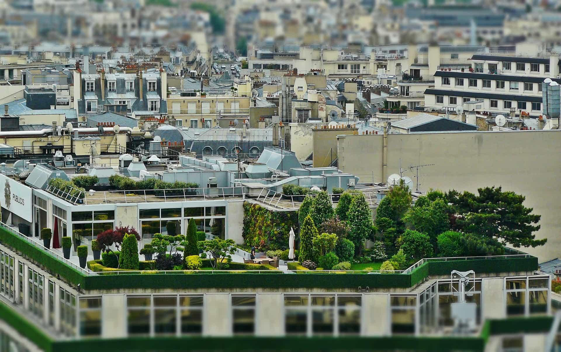Zahrada na střeše