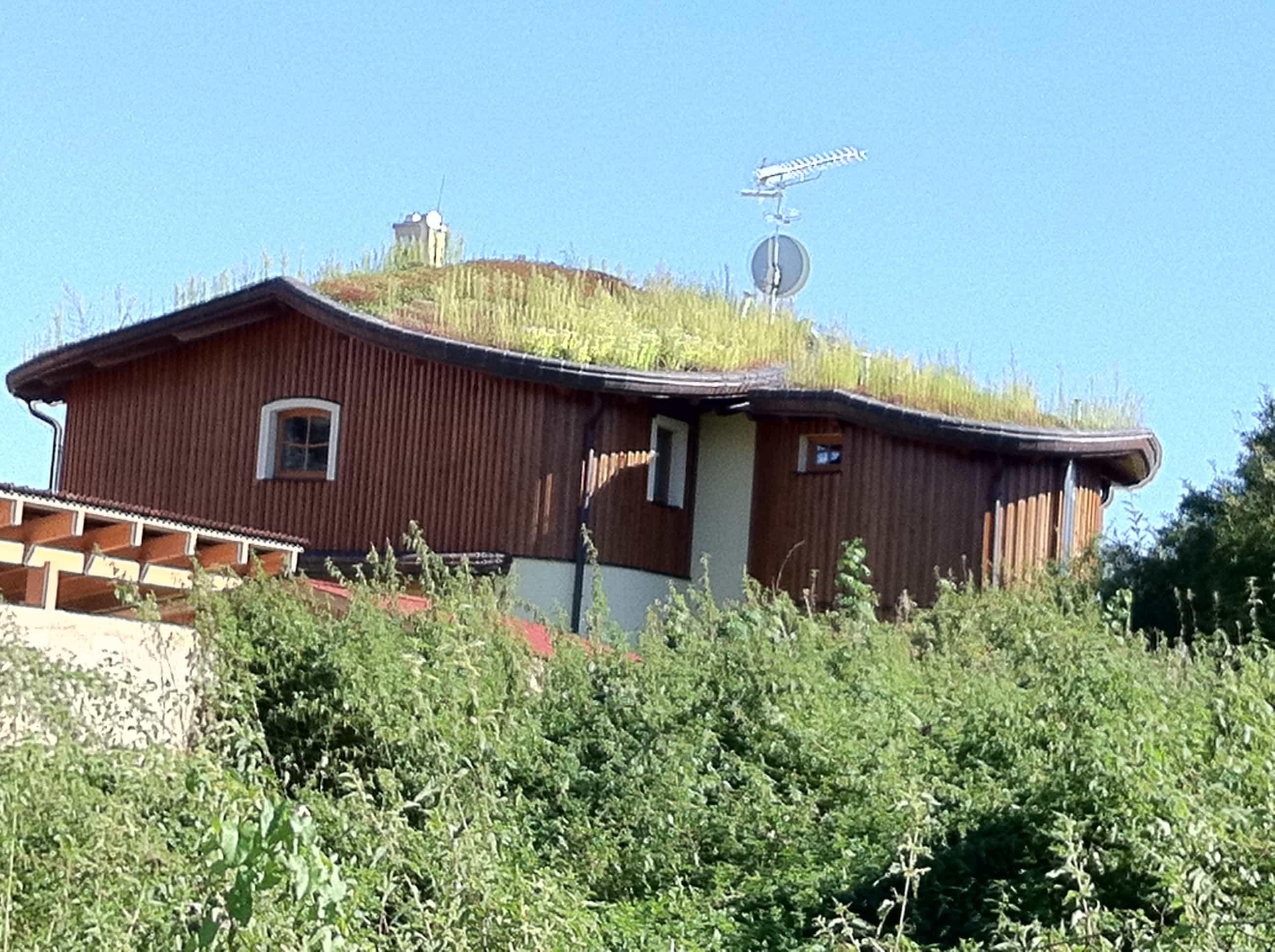 Rekonstrukce plochých střech: zelená střecha